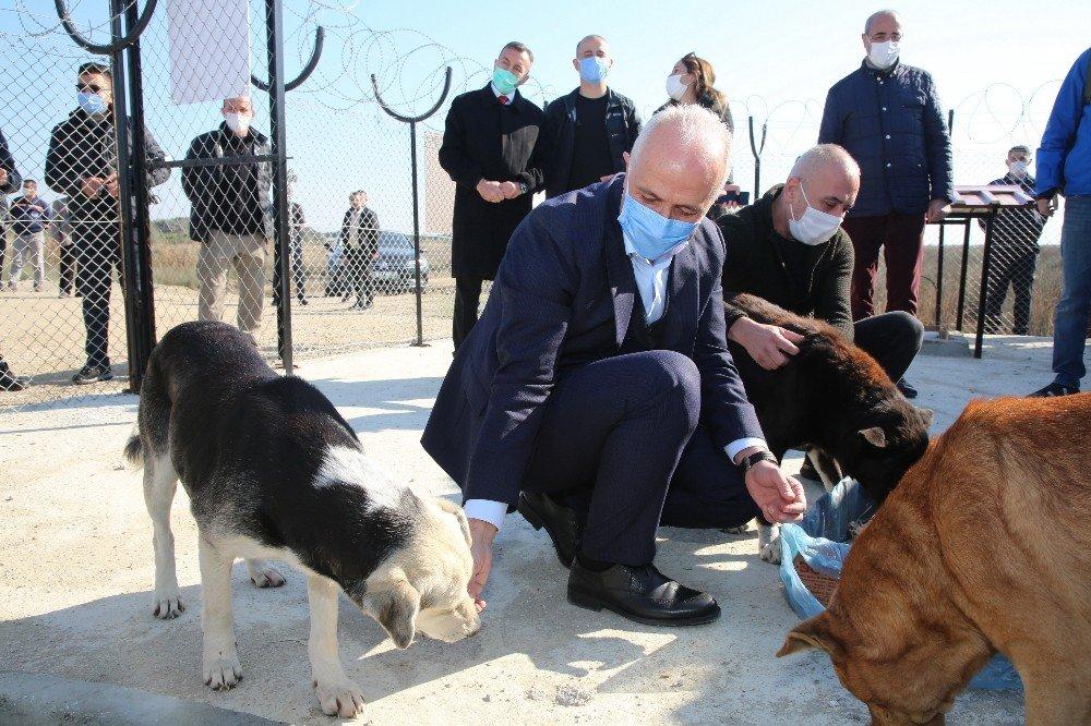 Akdeniz Belediyesi, Adanalıoğlu'nda Sokak Hayvanları İçin Korunaklı Alan Yaptı