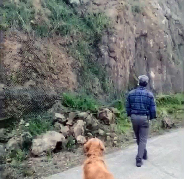 Tel Örgülerin Arkasında Sıkışan Kargayı Gören Köpek Haber Verdi, İtfaiye Kurtardı