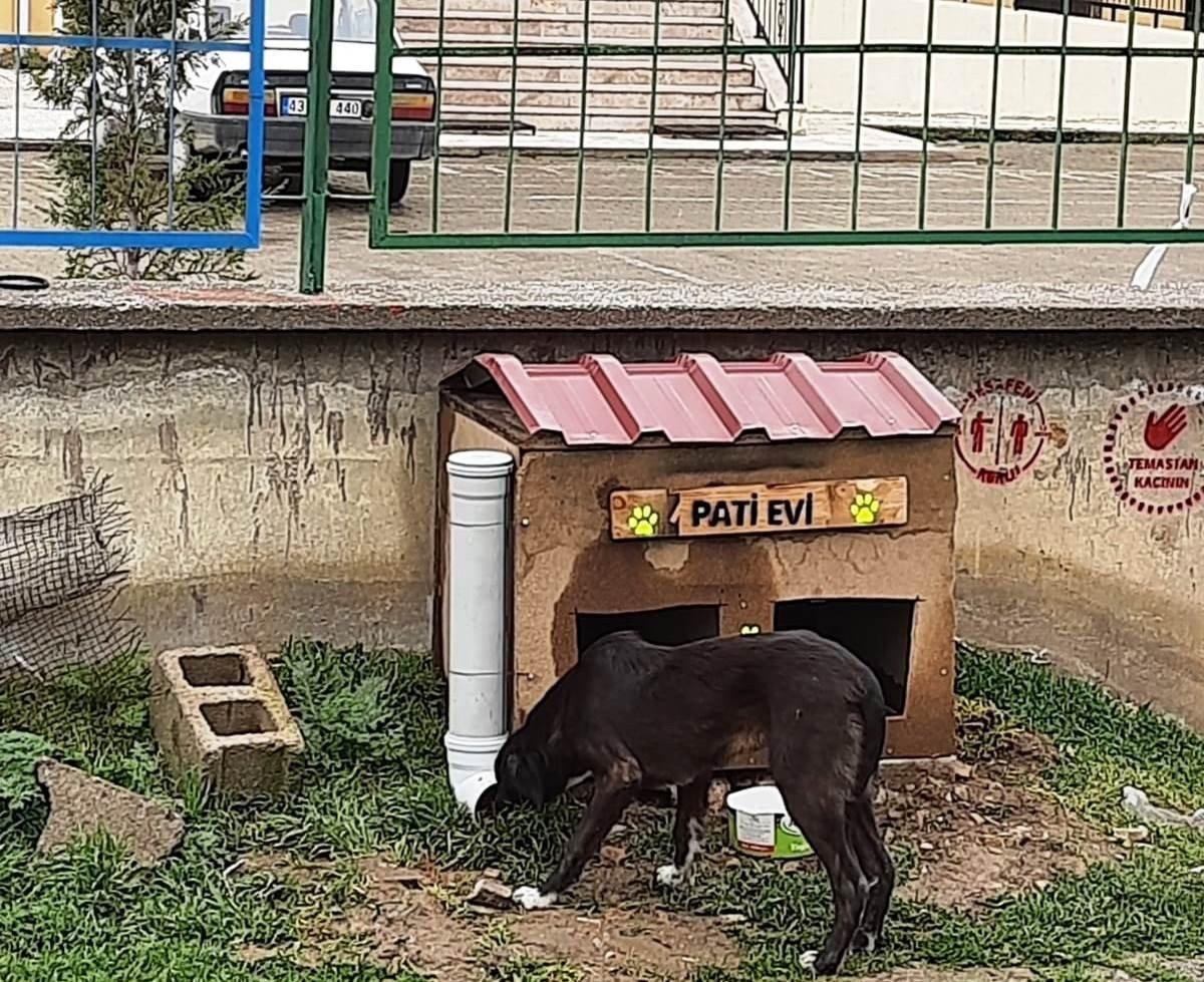 """Hisarcık Şehitler Ortaokulu'nda """"pati Evi"""" Projesi"""