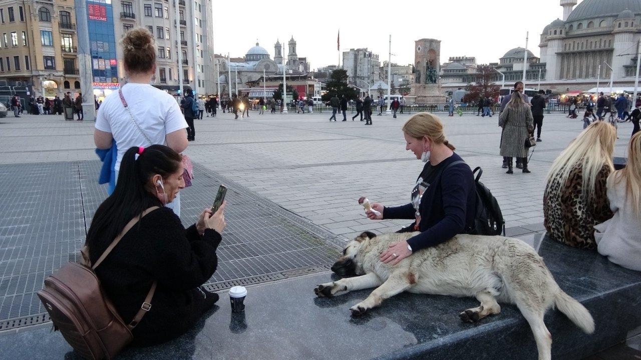 Taksim'de Köpeğin Turistlerle Dondurma Keyfi